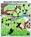 Голосіївський ліс DSC 0084.jpg