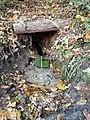 Джерело. Бучацьке лісництво, жовтень 2019.jpg