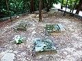 Заброшенное еврейское кладбище. Бабий Яр, г. Киев.jpg