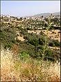 Кипр - panoramio (5).jpg