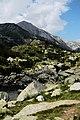 Национален парк Пирин - NP01 - локация Бандеришки езера-река Глазне No11.jpg