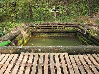 Національний природний парк «Голосіївський» Купальня 12.JPG