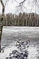 Озеро Подборное. По первому льду.jpg