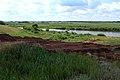 Озеро Рудничное в юго-восточном направлении - panoramio.jpg