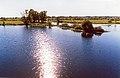 Озеро Солонецьке, Козелецький район, м. Остер 01.jpg