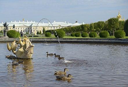 Петергоф верхний сад фонтан