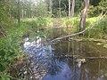 Річка Хмільчик, Садове.jpg