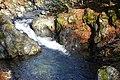 Стара река.jpg