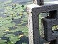 Тернопільський став, огорожа, 2011-07-24.jpg