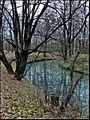 Тимирязевский парк - panoramio (1).jpg
