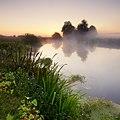 Туманний ранок на річці Вовча.jpg