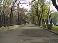 Улица Петровская - panoramio.jpg