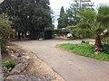 לאורך כביש 5 - מיכל מיכאלי מצלמת (8514629101).jpg