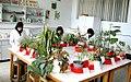 آزمایشگاه های کشاورزی.jpg