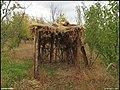 دیدنیهای پاییز مراغه - panoramio (14).jpg