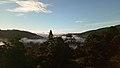 ป่าฮาลา-บาลา (นราธิวาส) 1.jpg