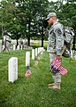 """""""Flags in"""" with The Old Guard in Arlington National Cemetery (17763543650).jpg"""