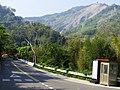 一六九縣道 County Road 169 - panoramio.jpg