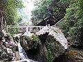 四川 广安-大 峡谷-小桥流水 - panoramio.jpg