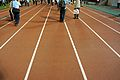 国立霞ヶ丘陸上競技場 (National Olympic Stadium) (14151165399).jpg