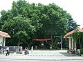 夏天的农院门口 - panoramio.jpg