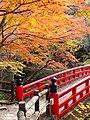 岩屋堂公園 (愛知県瀬戸市岩屋町) - panoramio (15).jpg
