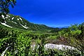 栂池自然園 - panoramio (9).jpg