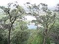 玉龙山腰 - panoramio.jpg