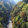 荒川-白川橋-紅葉-01 - panoramio.jpg