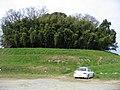 見瀬丸山古墳 2007.02.24 - panoramio.jpg
