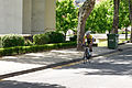 1º Grande Prémio Ciclismo - Freguesia de Castelo Branco - Juniores - 19ABR2015 DSC 1870 (17028848408).jpg