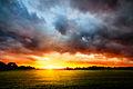 102 365² Luz en la tormenta (8389117142).jpg
