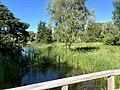 1279.Groningen.Grijpskerk.Nam.GasOpslag.Natuur.Park.NatuurPark.NoorderRiet.Natuurgebied.Kommerzeil.Planten.jpg