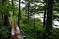 130727 Himenuma Rishiri Island Hokkaido Japan02s3.jpg