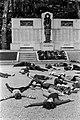 17.05.73 Mazamet ville morte (1973) - 53Fi1301.jpg