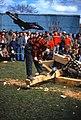 1956 Lumberjack Contest 2.jpg