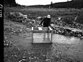 1958. Robert L. Furniss examines fish holding box used by Oregon Game Commission in Vinegar Creek on the Malheur National Forest to test the effect of 1958 western spruce budworm spray project on trout. (32364506353).jpg