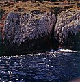 1958 Capri Cliffs Maurice Luyten.jpg