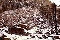1980 DETO Boulder field 01.jpg