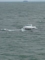 20' boat aground on rocks in Lake Erie DVIDS1120173.jpg