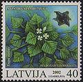 20020525 40sant Latvia Postage Stamp.jpg