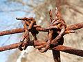 2012-03-13 10-30-43-site-plutons-detail-barbele.jpg
