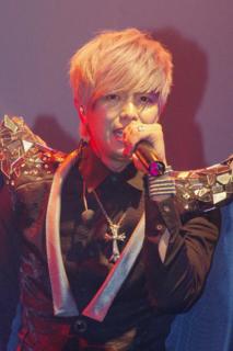 Alien Huang Taiwanese singer, actor, TV show presenter, writer, illustrator and fashion designer