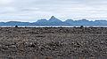 2014-09-16 10-47-21 Iceland Suðurland - Skogar.jpg
