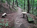 20140809110DR Röhrsdorf (Dohna) Schloßpark Röhrsdorfer Grund.jpg