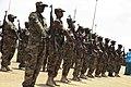 2015 03 03 Puntand President visits Kismayo-1 (16714843602).jpg