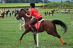 4ème manche du championnat suisse de Pony games 2013 - 25082013 - Laconnex 38.jpg