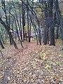 565 01 Choceň, Czech Republic - panoramio (49).jpg