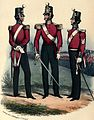 73rd Foot uniform.jpg