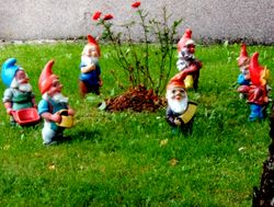 Front de libération des nains de jardin 250px-7_garden_gnomes